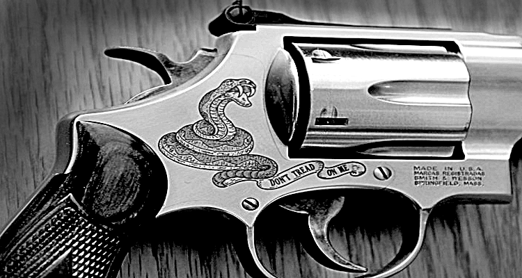 Gun Sales Might Spike as an Inept Capital Hill Desecrates the Constitution