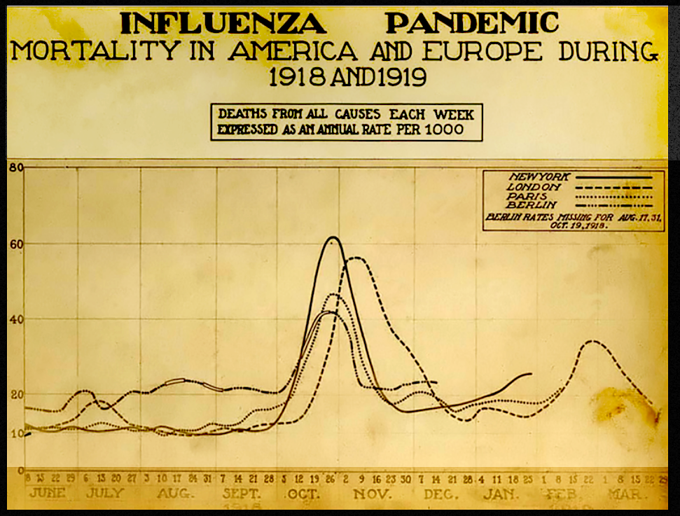 1918-19 Pandemic Excess Deaths Chart