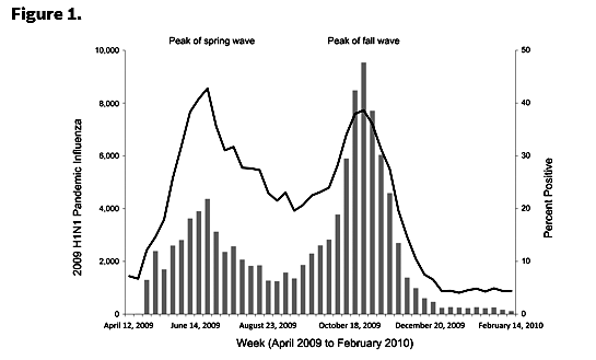 2009 Swine Flu Pandemic Waves